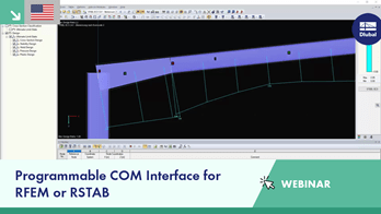 Programmable COM Interface for RFEM or RSTAB