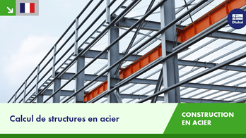 Calcul de structures en acier | Dlubal Software