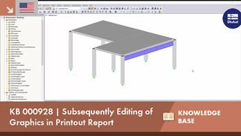 KB 000928 | Subsequently Editing of Graphics in Printout Report