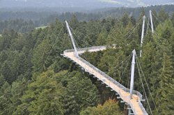 Suspension bridge construction of path (© skywalk allgäu)