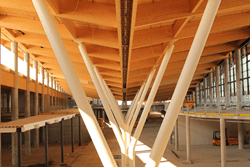 Timber roof supported by steel columns (© ATP)